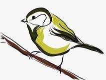 Mały żółty ptasi tit siedzi na gałąź, wektor, ilustracja wektor