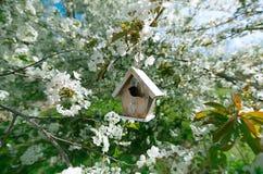 Mały Birdhouse w wiośnie z okwitnięcie wiśnią obraz royalty free