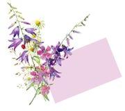 Mały bukiet dzika akwarela kwitnie, dzwon, goździk, chamomile ilustracji