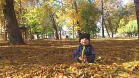 Mały chłopiec obsiadanie na trawie i spadać liściach w parku na wczesnym jesień dniu patrzeje żółtego liść jaskrawym i pogodnym zbiory