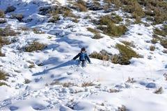 mały chłopiec odgrywa śnieg Obrazy Stock