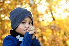 mały chłopiec się zdjęcia royalty free