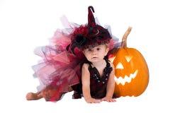 Mały czarownicy dziewczyny dziecko śmia się wśród bani i świeczek na białym tle Zdjęcie Royalty Free