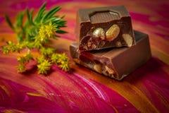 Mały czekoladowy bar obok rośliny na ręce malował tło Neutralny kolory dla projektantów obrazy royalty free