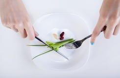 Mały dieta posiłek zdjęcia royalty free
