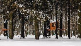 Mały domek na drzewie w zima park zakrywającym śniegu Obraz Stock
