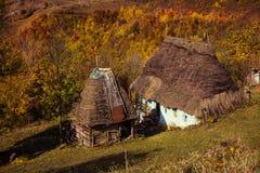Mały drewniany dom z pokrywającym strzechą dachem Zdjęcie Royalty Free