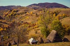 Mały drewniany dom z pokrywającym strzechą dachem Fotografia Royalty Free