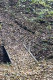Mały drewniany most na śladzie obrazy royalty free