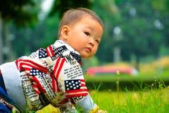 Mały dziecka czołganie na gazonie zdjęcie stock