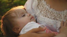 Mały dziecko spada uśpiony w rękach matka, matka i córka chodzi w lato parku, zwolnione tempo zbiory wideo