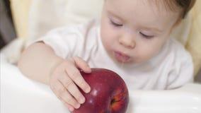 Mały dziecko trzyma czerwonych jabłka i gryźć on dziecko śniadanie w jego dzieci krześle piękny małego dziecka łasowanie zdjęcie wideo