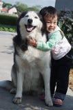 mały dziewczyny zwierzę domowe Obraz Royalty Free