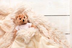 Mały futerkowy dziecko zabawki niedźwiedź zakrywa z ciepłą koc zdjęcie royalty free