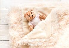 Mały futerkowy dziecko zabawki niedźwiedź zakrywa z ciepłą koc fotografia stock