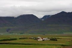 Mały gospodarstwo rolne wśród zielonych wzgórzy w Iceland Zdjęcia Royalty Free