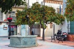 Mały jard z pomarańczowymi cytrusów drzewami w Marbella, Andalusia, Hiszpania Obraz Stock