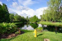 Mały jezioro w Tampa palm społeczności obraz royalty free