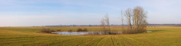 Mały jezioro w wiośnie Obraz Royalty Free