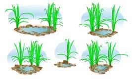 Mały jezioro z trawą wektor Dla krajobrazowego projekta i druku ilustracja Set Zdjęcie Royalty Free