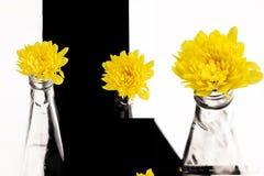 Mały kolor żółty kwitnie w butelce Zdjęcie Stock