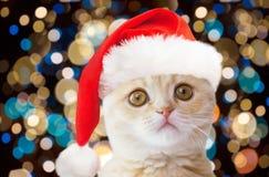 Mały kot w Santa kapeluszu nad bożonarodzeniowe światła Zdjęcia Stock