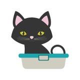 Mały kota obsiadanie przygotowywa zwierzę domowe wannę Zdjęcie Royalty Free