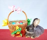 Mały królik kłama blisko kosza z Wielkanocnymi jajkami dekorującymi z barwionymi faborkami Zdjęcia Stock