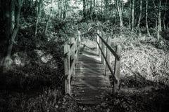 Mały lasu most nad wodą w czarny i biały zdjęcia stock