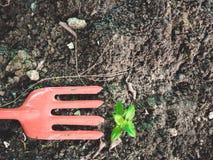 Mały młodej rośliny i rydla narzędzie z glebowym tłem Zdjęcie Royalty Free