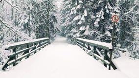 Mały most bez wejścia podpisuje wewnątrz spada śnieg Zdjęcie Stock