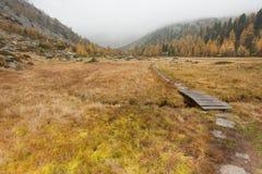 Mały most tęsk ścieżka w łące przy spadkiem Fotografia Royalty Free