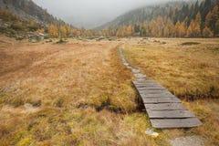 Mały most tęsk ścieżka w łące przy spadkiem Obrazy Stock