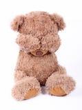 mały niedźwiedź smutny Fotografia Royalty Free