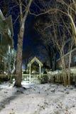 Mały ogród przy nocą Zdjęcia Royalty Free