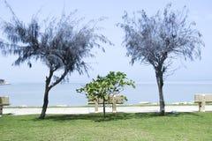 Mały park w Bahrajn droga na grobli fotografia royalty free