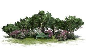 Mały park z krzakami i drzewami na białym tle Fotografia Stock
