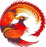 Mały Phoenix ptak Obrazy Royalty Free