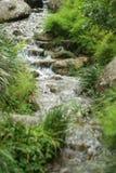 Mały piękny strumień woda Zdjęcie Royalty Free