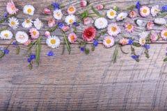 Mały pole kwitnie na rocznik wietrzejącym drewnianym tle Retro projektujący kwiecisty tło Obraz Stock