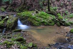 Mały pstrągowy strumień w Appalachian górach Zdjęcie Royalty Free