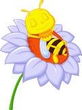 Mały pszczoły kreskówki dosypianie na dużym kwiacie Zdjęcie Stock