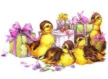 Mały ptaka, prezenta i kwiatów tło, Obrazy Stock