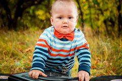 Mały pyzaty dzieciak w czerwonej łęku krawata jesieni outdoors obraz stock