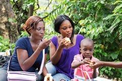 Mały rodzinny relaksujący publiczny występ obraz royalty free