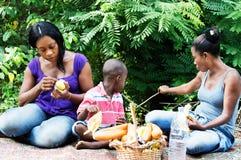 Mały rodzinny relaksujący publiczny występ zdjęcia stock