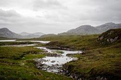 Mały rzeczny lać się przez torfowiskowego krajobrazu Zdjęcie Royalty Free