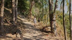 Mały słodki dziewczyna spacer kraj ścieżka w tropikalnym terenie zbiory