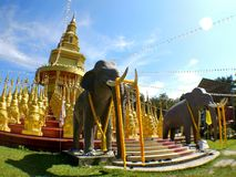 Mały słonia przód Złocista stupy pagoda obraz stock
