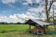 Mały schronienie pod Ładnym jasnym niebieskim niebem przy zieleni polem Zdjęcie Stock